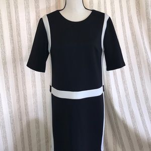 KARL LAGERFELD Size 8 Black/White Dress